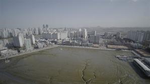 시흥시, '월곶항·오이도항' 수도권 거점 어항으로 조성