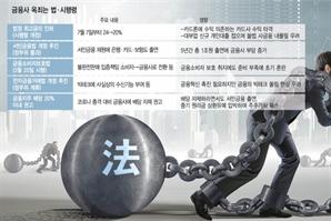 """서민금융법·배당 제한 겹규제…해외서 """"韓금융사 문제 있나"""" 묻기도"""