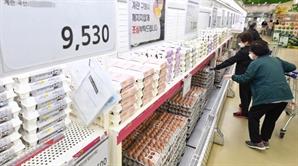 꺾이지 않는 계란값에…정부, 6월 달걀 수입 5,000만개서 7,000만개로 확대