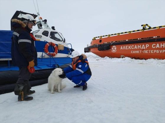 [영상]'네가 왜 거기서 나와?' 러시아 실종견, 북국해 빙원에서 극적 구조