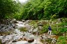 [休] 청정계곡 명품숲…더위도 비켜가다