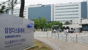 삼성디스플레이, 사내서 임직원 백신접종…기업 자체 접종 확산