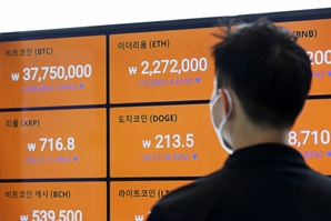 """""""일방적 상폐 부당"""" 드래곤베인, 빗썸에 소송…가격 두 배 폭등"""