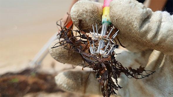 [지구용] '해변에 웬 주사기?…바닷가 쓰레기로 작품 만드는 비치코밍