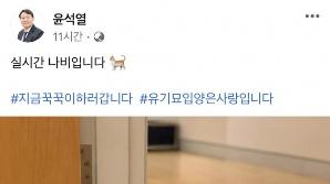 """'나비 집사' 윤석열 """"지금 꾹꾹이 하러 갑니다""""…반려묘 사진 공개"""