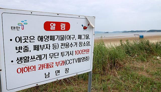 [지구용]'해변에 웬 바위만한 스티로폼이…' '김제동과 어깨동무'와 함께한 줍깅