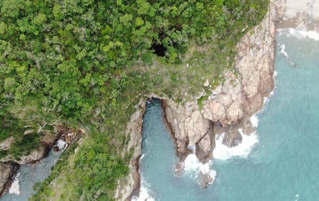 용이 솟구치듯…남쪽 끝 섬에선 쪽빛이 솟구치네[休]