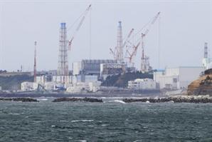 이번엔 '방사성 벌꿀'…日후쿠시마 양봉장서 세슘 기준치 초과 검출