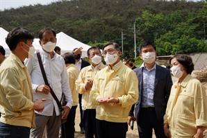 산림청, 솔나방 피해 조기예찰·적기방제 나선다