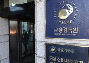 금감원, '손태승 DLF' 1심 항소 결정