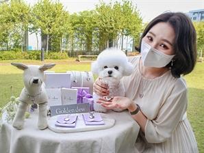 """""""비숑~28만원짜리 펫 주얼리 걸쳐 볼래?"""""""
