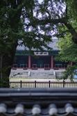 [休]주말 나들이 '서울 한옥마을' 어때요