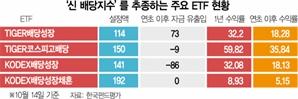 거래소 야심작 '신배당지수' 찬밥 신세로
