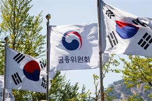 """""""잔금대출 정보 주단위 모니터링""""… 금융 당국, TF 개최"""