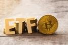 美 SEC, 반에크 이어 발키리까지 비트코인 ETF 잇단 승인