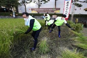농협중앙회, 서울 도심 속 가을걷이