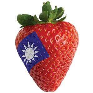 [만파식적] 딸기족